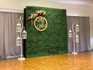Hire Flower Wall - Green Buxus Flower Wall