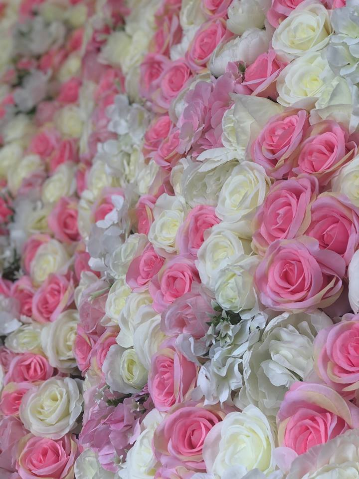 Hire Flower Wall - Pink & Cream Rose Flower Wall