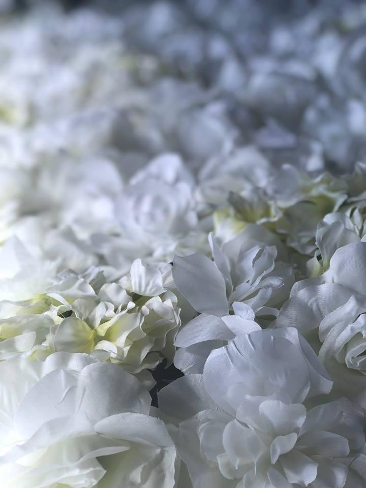 Hire Flower Wall - White Rose & Hydrangea Flower Wall