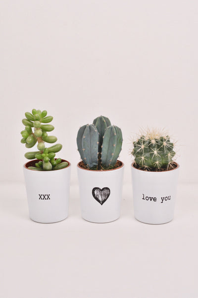 Mini Trio Love Note