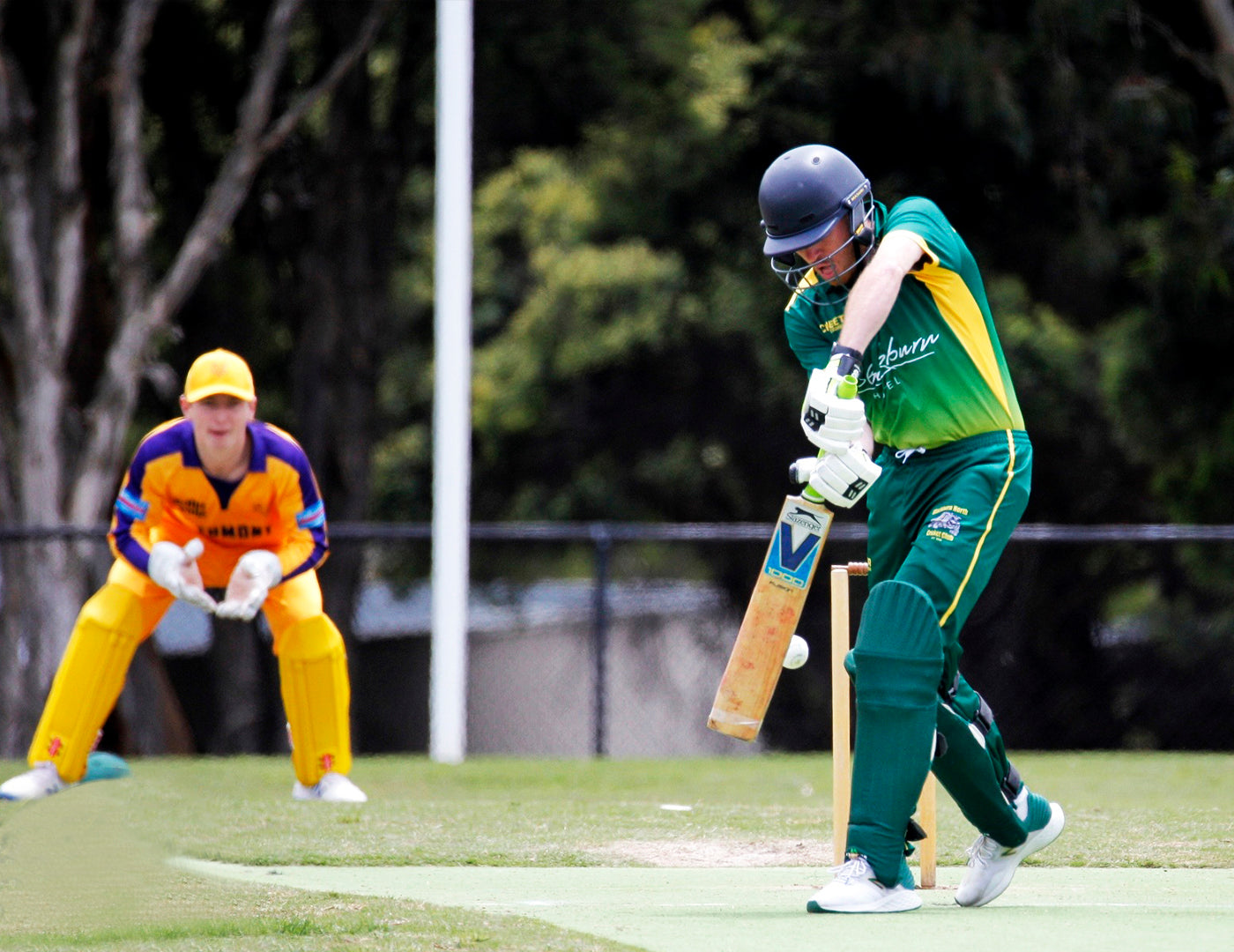 This image has an empty alt attribute; its file name is cricket03.jpg