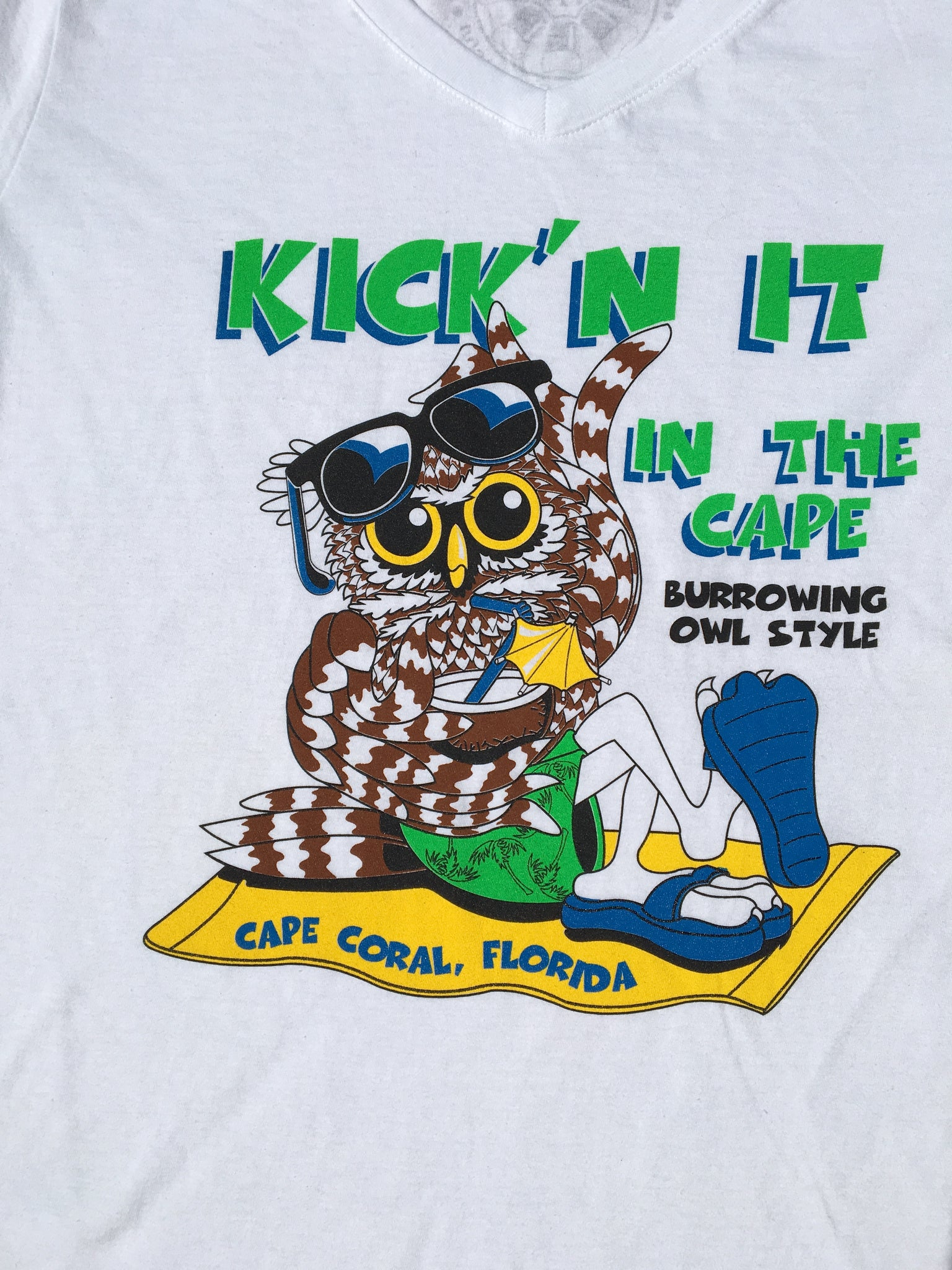 Burrowing Owl at the Beach Ladies Short Sleeve V Neck Shirt
