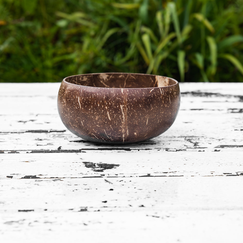 Coconut Bowl Large