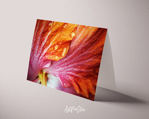 Hibiscus Flower Photo Art Customized Gift Cards