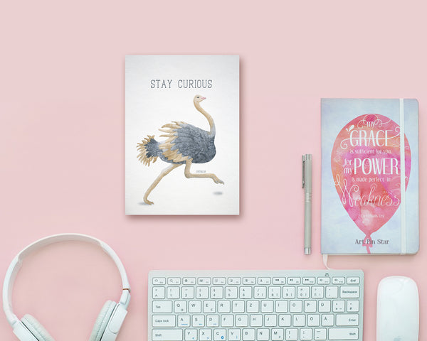Stay Curious Ostrich Animal Greeting Cards