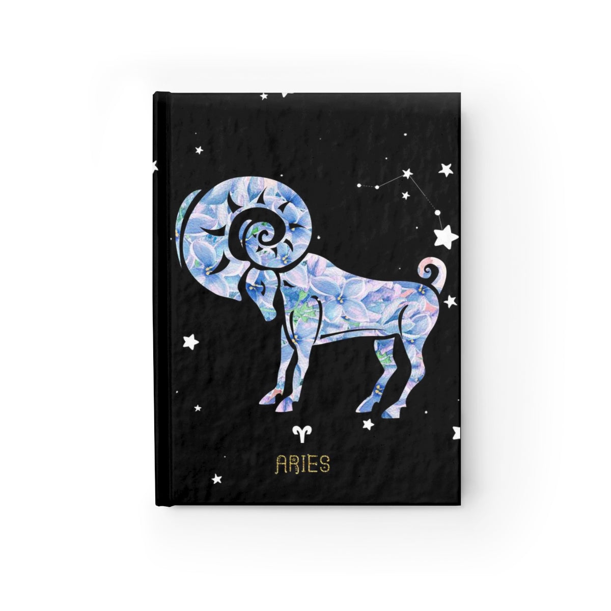 Aries Journal, Blank