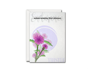 Thistle Flower Meanings Symbolism Customized Gift Cards