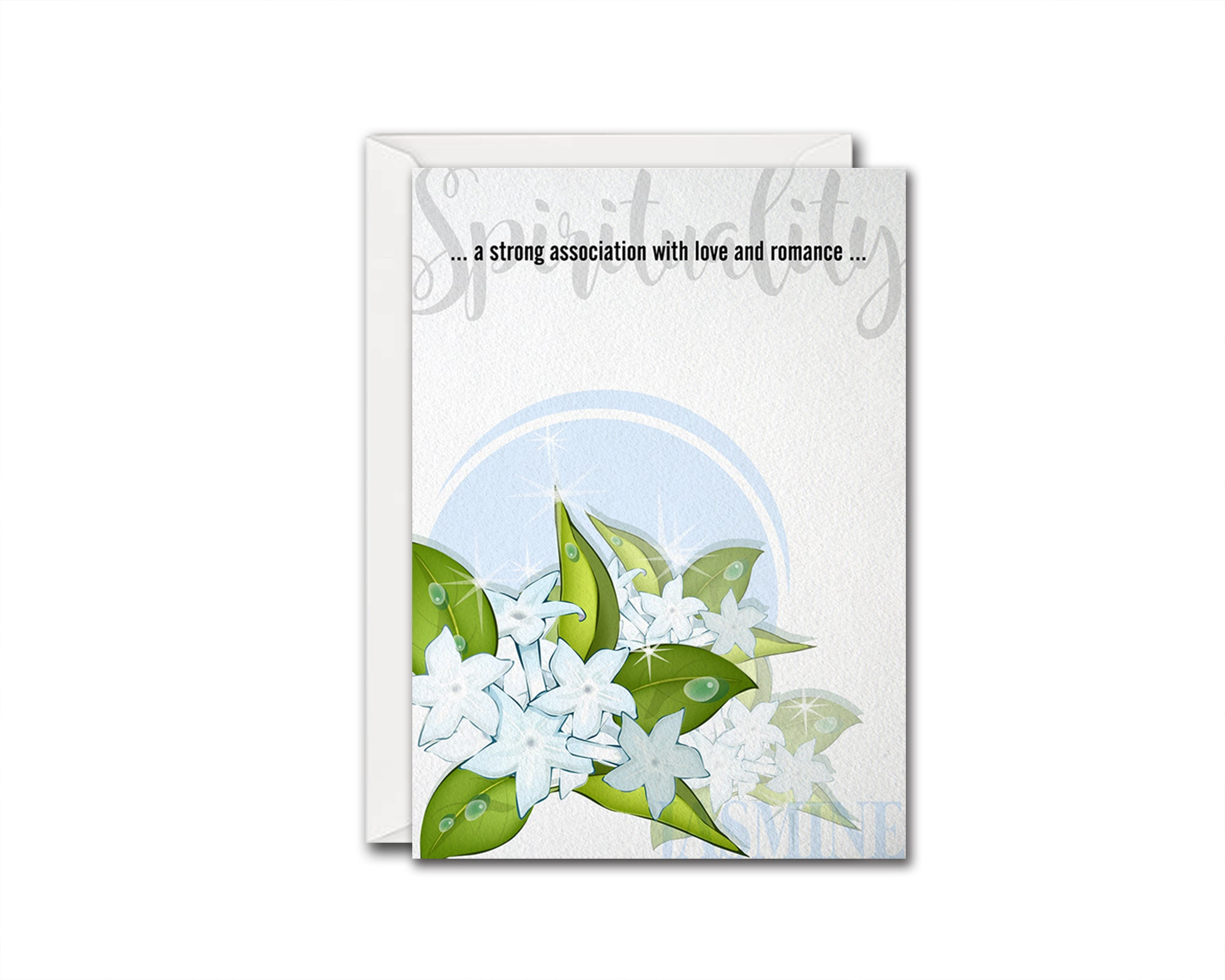 Jasmine Flower Meanings Symbolism Customized Gift Cards