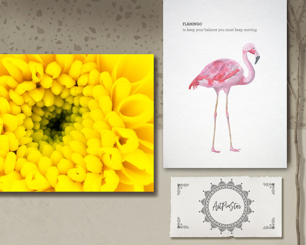 Chrysanthemum Flower Photo Art Customized Gift Cards