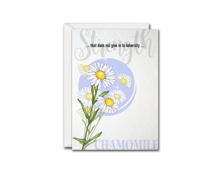 Chamomile Flower Meanings Symbolism Customized Gift Cards