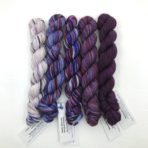 Socknado Twisters Mini Skein Set - Grape Punch