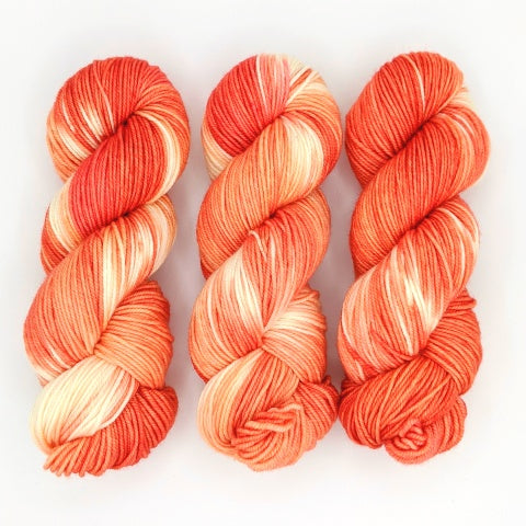 Creamsicle - Merino DK / Light Worsted - Dyed Stock