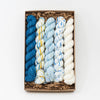 Socknado Twisters Mini Skein Kit - Custom Kit 38