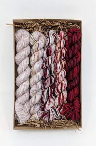 Socknado Twisters Mini Skein Kit - Custom Kit 5 With Pattern!