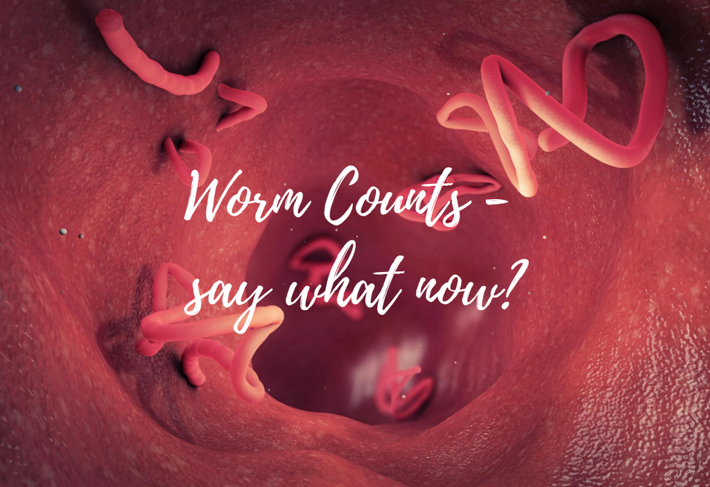 Worm Counts for Dogs