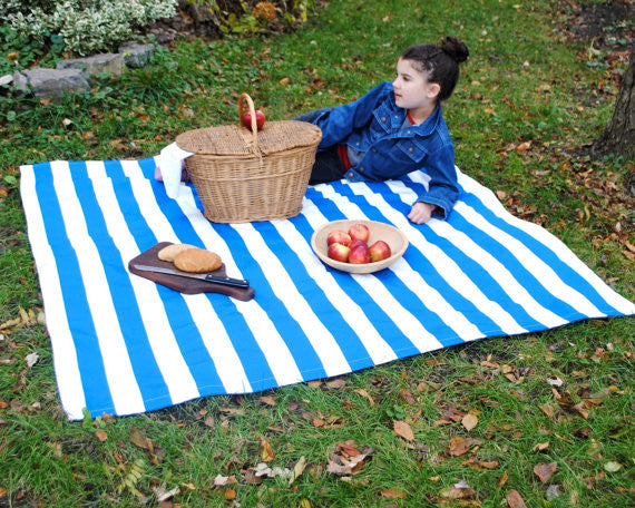 How to Choose a Picnic Blanket