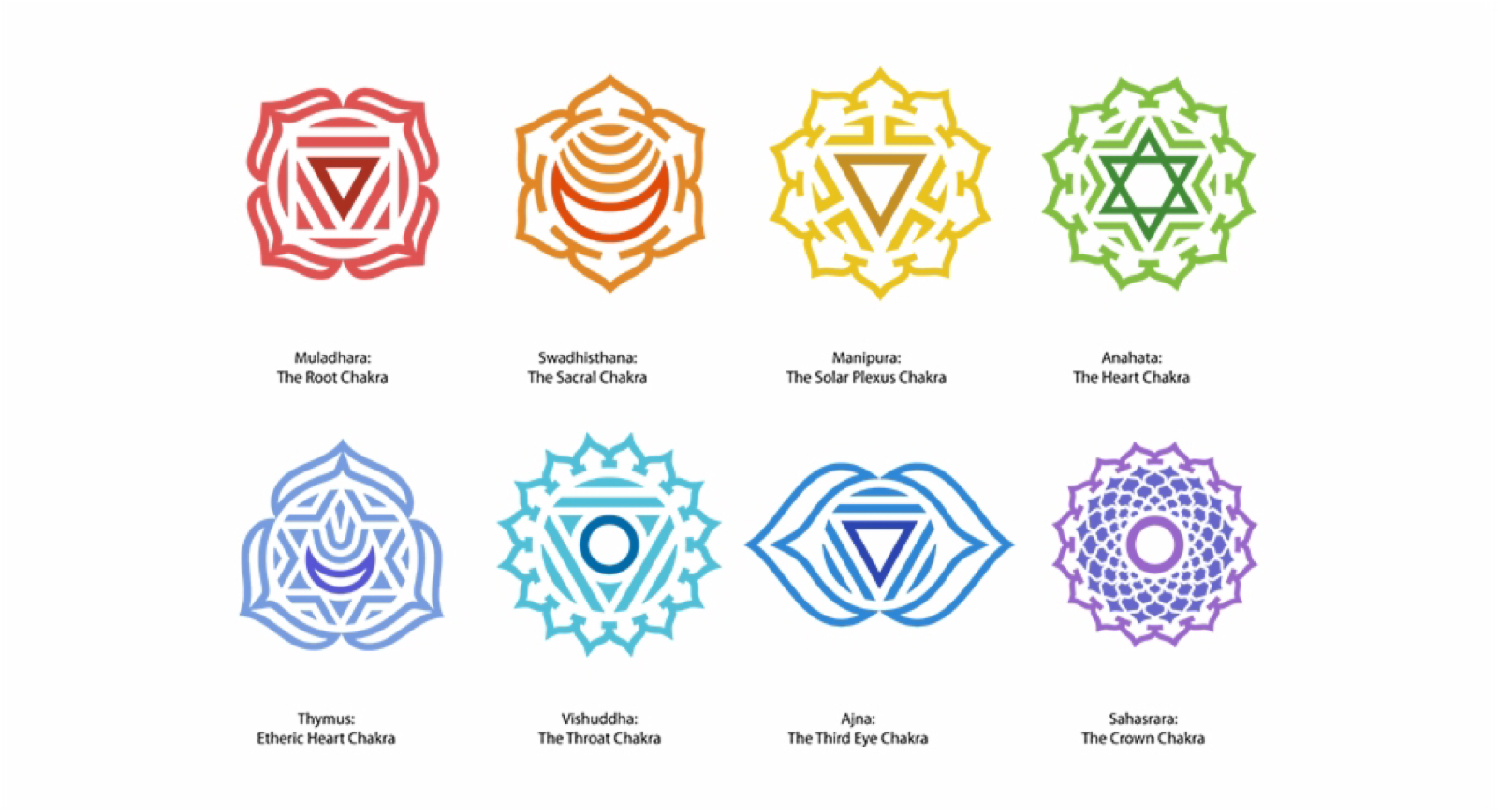 Chakra and its colors, root chakra, Healing, feel good with balanced chakras