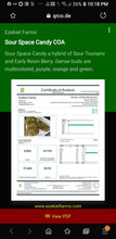 Load image into Gallery viewer, Green dragon Cbd oil