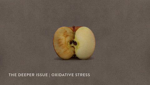 The Deeper Issue | Oxidative Stress