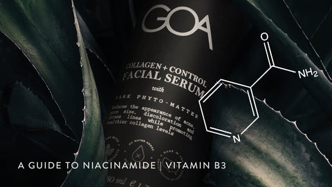 A Guide to Niacinamide | Vitamin B3