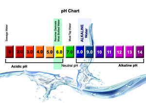 Should You Buy Electrolyte-Enhanced, Nutrient-Enhanced and Alkaline Waters?