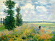 Poppy Fields near Argenteuil (1875) - Claude Monet Paint By Number Kit