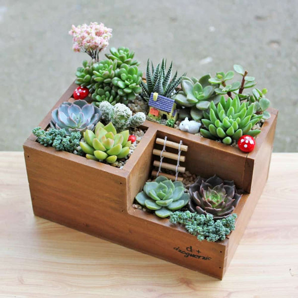 Garden Planter Home Storage Box - LuLuify.com