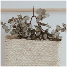 Load image into Gallery viewer, MIKANU HANGING BASKET