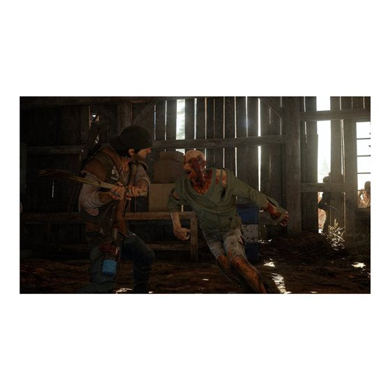 Days Gone, Sony, PlayStation 4, 711719504757