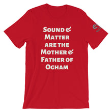 Load image into Gallery viewer, Sound and Matter - True Royal, Forest, Red - Short-Sleeve Unisex T-Shirt - Eel & Otter