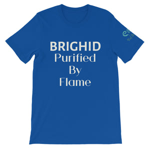 Brighid - Purified by Flame - Royal Blue, Asphalt & Forest Green - Unisex Short Sleeve Jersey T-Shirt - Eel & Otter