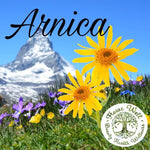 Arnica (Injury) Cream