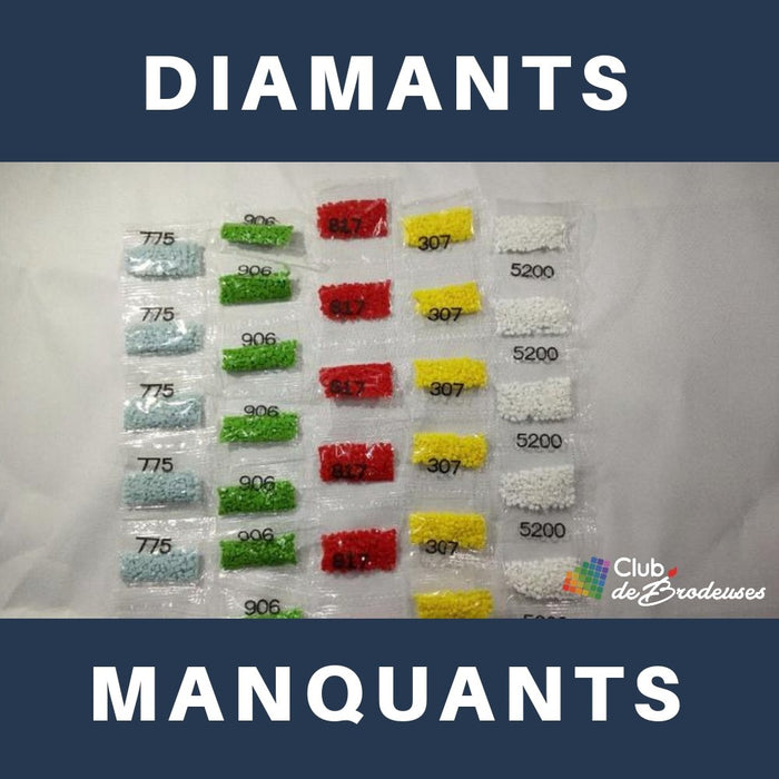 Diamants Manquants - Artiste du Diamant - Diamond Painting