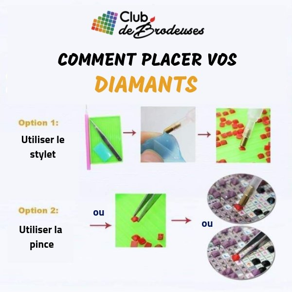 Roses & Papillons Fluorescents - Kit Broderie Diamant - Club de Brodeuses