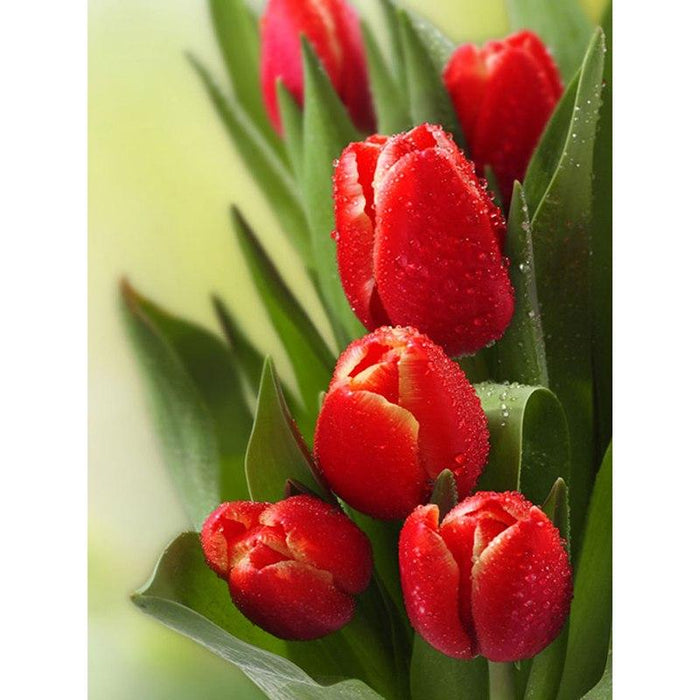 Superbes Tulipes Rouge - Kit Broderie Diamant - Club de Brodeuses