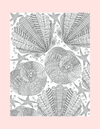 Coloring Page 37 Seashells - Self Care Pursuit