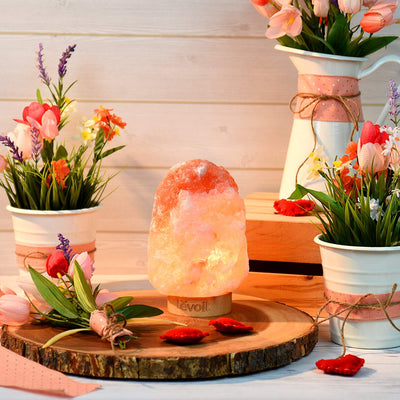 Himalayan Salt Lamps For Air purification, Stress reduction, and improved Sleep - Self Care Pursuit