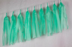 Mint Green Tassels - Brown Sugar Party Boutique