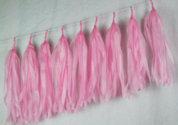 Light Pink Tassels - Brown Sugar Party Boutique