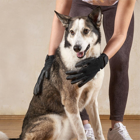 Dog Glove Hair Removal