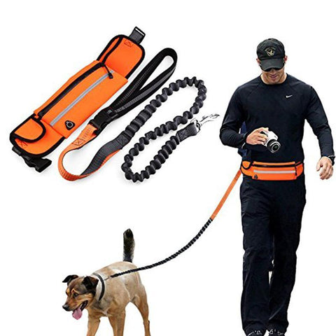 YPLM hands free dog leash