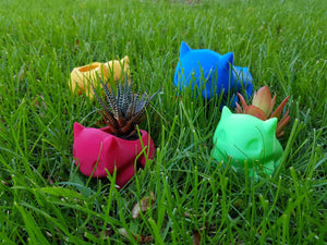 Bulbasaur planter | Succulent plant pot