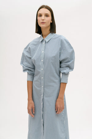 Curve Sleeve Shirt Dress
