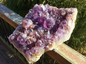 "Amethyst Crystal Quartz Large 48 lb. Cluster - 16"" Long ~ Big Gorgeous Beautiful Purple Sparkling Points Mineral Specimen ~ Reiki Display"