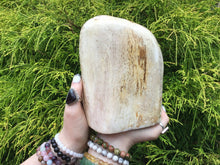 "Load image into Gallery viewer, Petrified Wood Large 4 lb. ~ Stunning 7"" Tall Collector's Display Piece ~ Mined In The Philippines Millions Of Years Old ~ Fast Shipping"