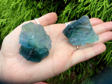 Fluorite Crystals Pair of Pocket or Altar Crystals ~ 2 Gorgeous, Glowing Blue and Green Colors ~ Perfect for Meditation, Third Eye, Gifting