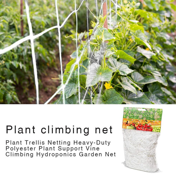 Mesh 5/10m Polyester Net Loofah Netting For Morning Glory Vine Flowers Garden Plants Climbing Net Cucumber Vine Grow Holder