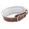 Leather Weightlifting Belt - shoppe-aesthetics