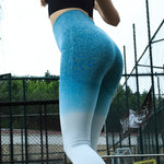 Women Sports Gym Yoga Pants Compression Tights Ombre - shoppe-aesthetics