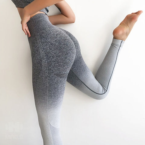Women Ombre Seamless Leggings (Dark Gray-Light)